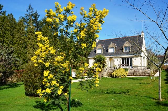 Vente  maison Saint-Avé - 5 chambres - 220 m²