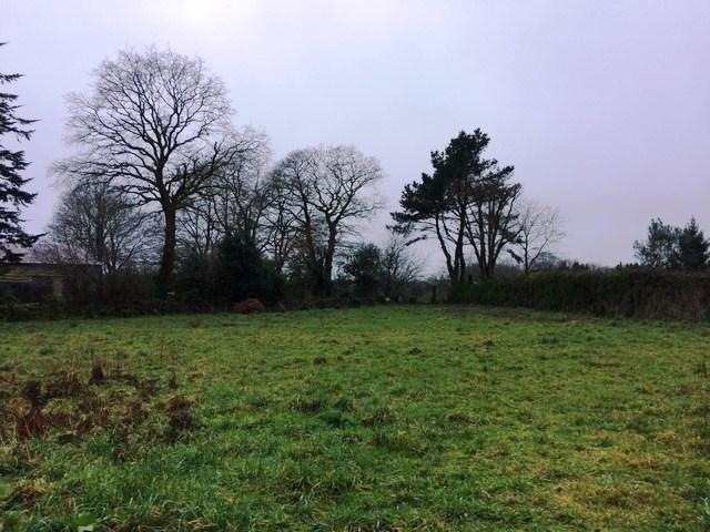Vente  terrain Saint-Avé -  - 967 m²
